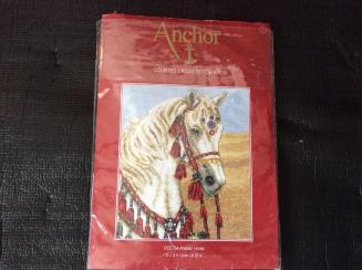 arab horse 1