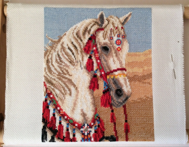 Arabian Horse before outlines