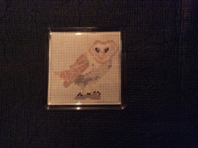 little barn owl coaster