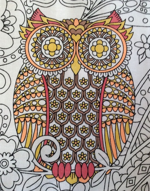owls orange
