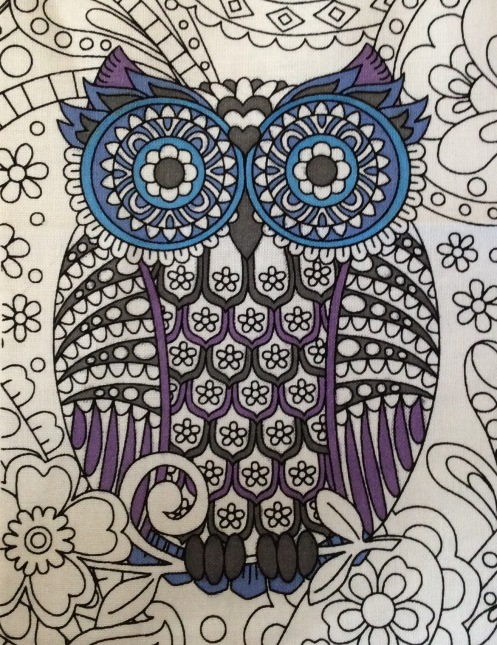 owls purple