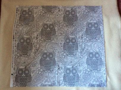 owls plain
